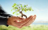 Loja do Condomínio estabelece parceria com Ecopilhas