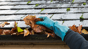 Prevenir no verão para viver melhor no inverno